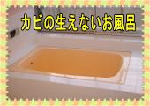 Topfuro121_2